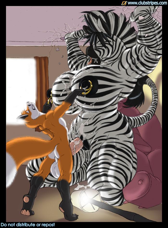 И йифф зеброй с